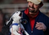 2015, Andy, Team USA, ceremonies, crackers, jack russell terrier, mueller, prizegiving, toy