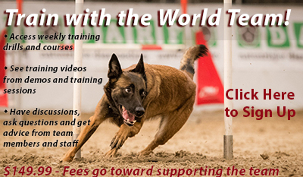 http://worldteam.donate2dogsports.org/